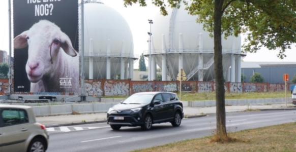 Gaia Wall Bld D'Anderlecht